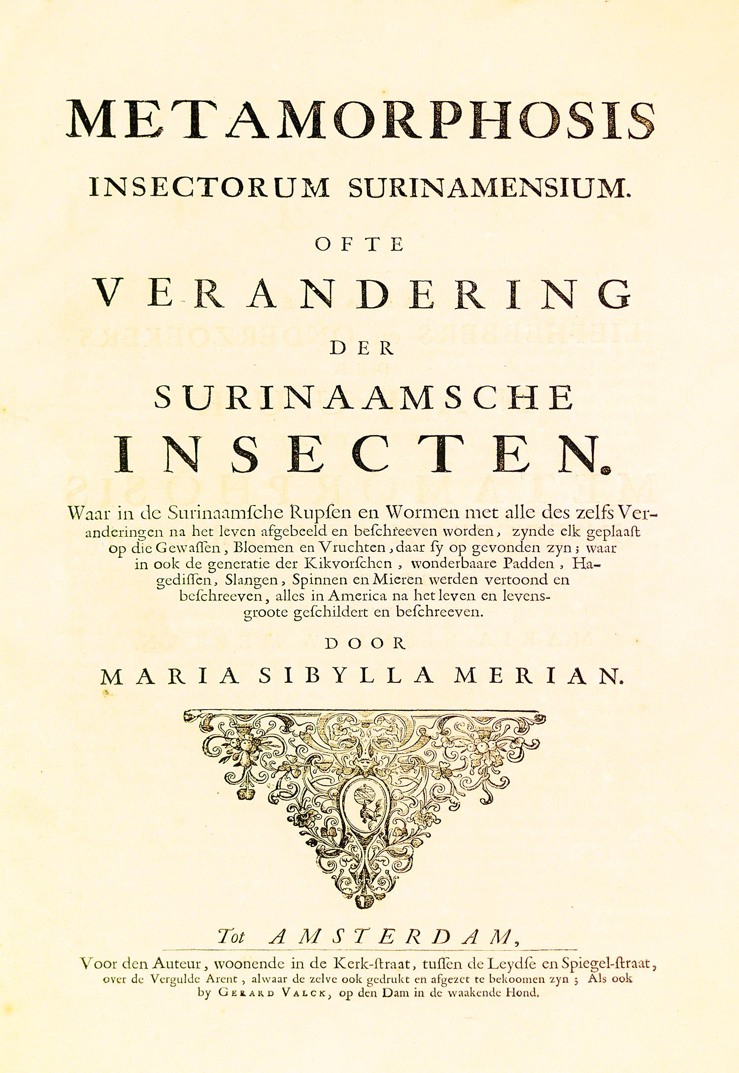 1705 (1) d  MED CORRECTED