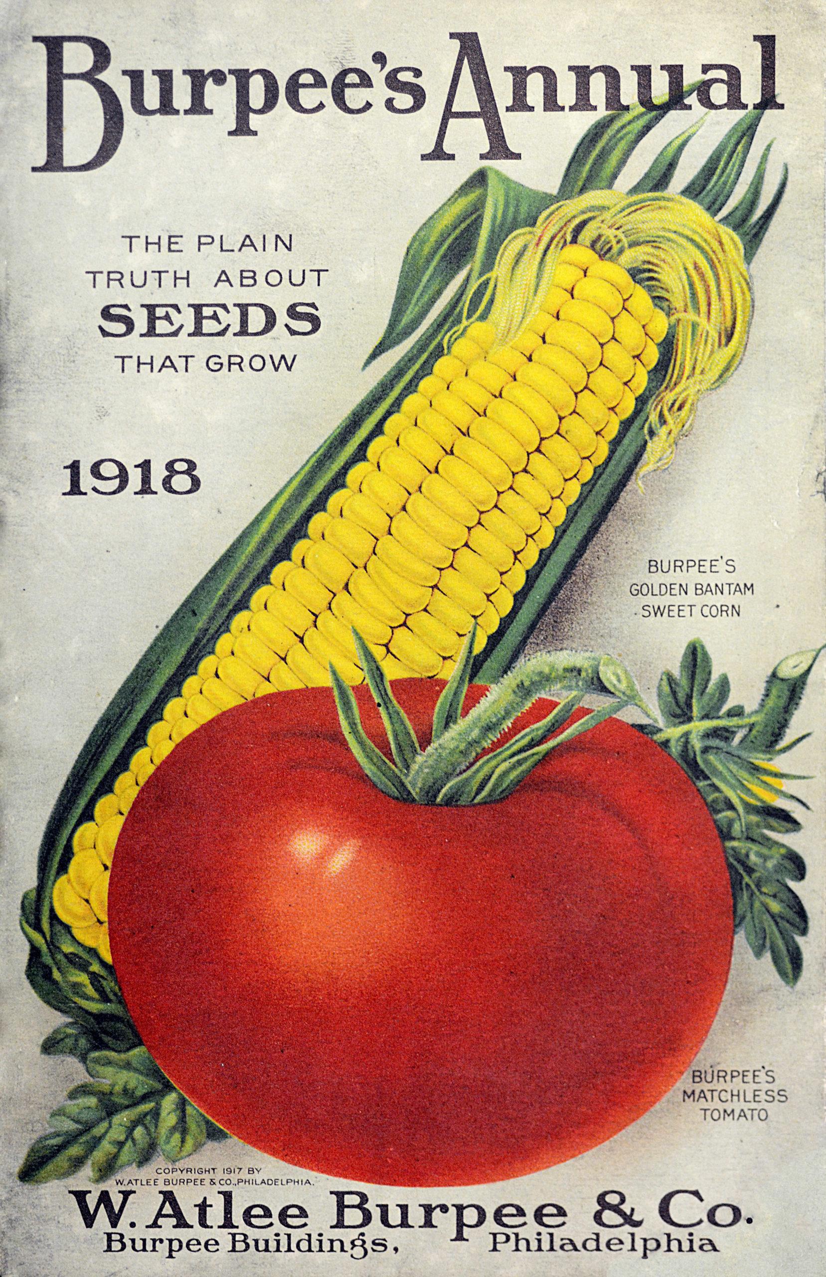 Burpee's catalog 1918