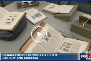 Image of open rare books displaying images of cicadas