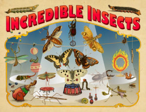 A variety of insects portrayed as circus performers.